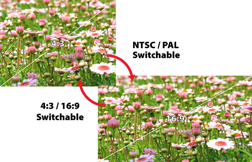 RunCam Micro Eagle 4:3 16:9 PAL NTSC